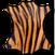 Boucles façon tigre
