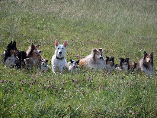 Gruppenfoto beim Nordseeturnier