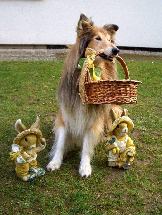 der Osterhund .... hoppel-hoppel