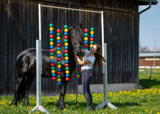 kreative Bodenarbeit, Angst, Pferd, Desensibilisierung, Natural Horsemanship, Freiarbeit, Spaß mit Pferden, Gelassenheitstraining, Antischrecktraining, Antischeutraining, schreckhaft, scheuen, Ronja Rübelmann, Lucky Horse Shop, Vorbereitung Ausreiten