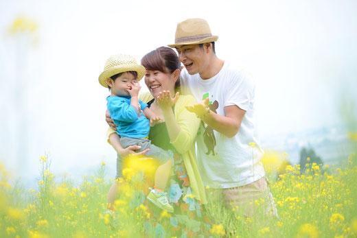 美里町八木沢の菜の花畑5月