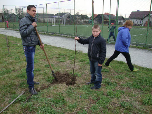 Дерева в саду садили учні та жителі Запитова