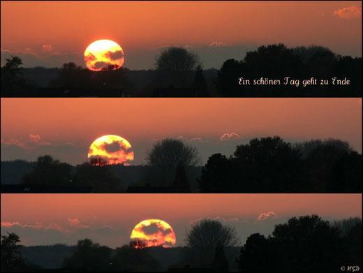Wir denken selten an das, was wir haben, aber immer an das, was uns fehlt.  - Arthur Schopenhauer