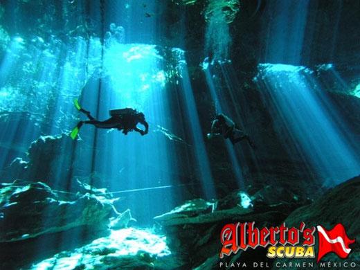Cenote Diving Playa del Carmen - Albertos Scuba