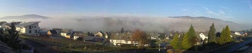 Die Brauneberger Weinberge im Nebel