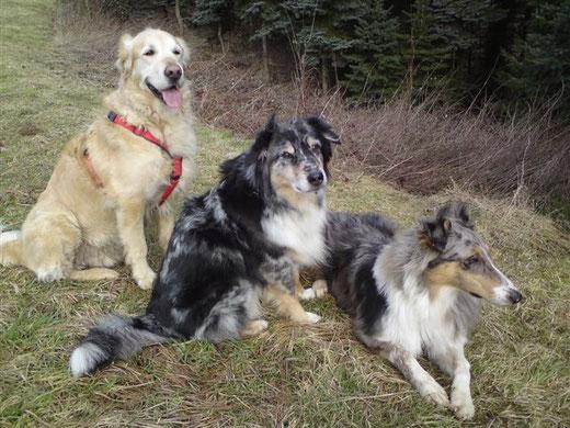 Das sind wir: Timber, Yassie & Samyai - die coolsten Co-Trainer, die man sich vorstellen kann.