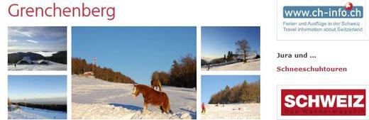skifahren bauernhof schweiz