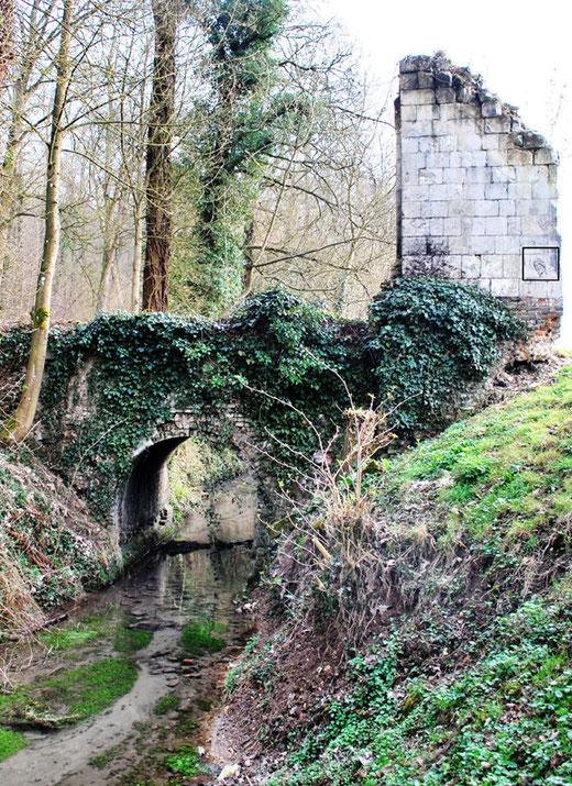 Les ruines de l'ancien château: FIEFFES-MONTRELET
