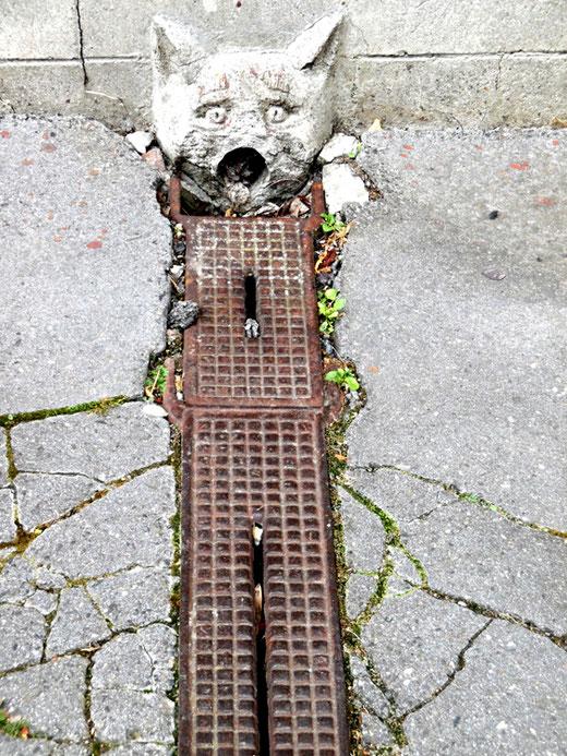 Le chat sculpté au bout de la bouche d'égout- Photo: Gégé de Oisemont