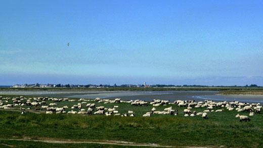 La baie de Somme- Photo Marie-Paule Dupuis