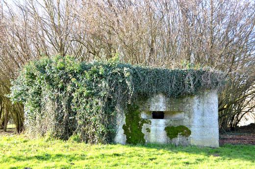 Entre Hénencourt et Laviéville