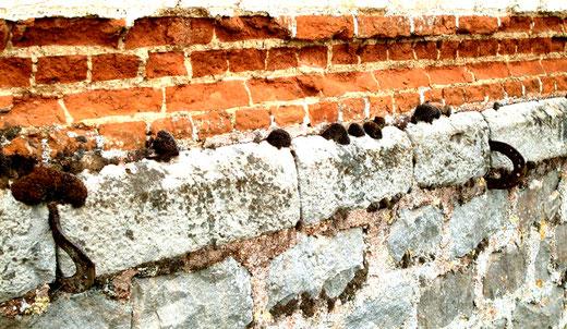 Fers à cheval sur les murs du château de Bertangles-Ph: Gégé d'Oisemont