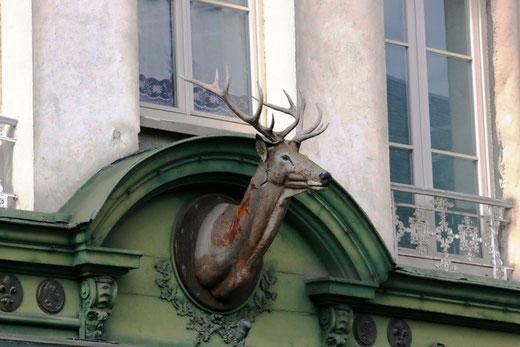 Un cerf avec de jolis bois pour l'enseigne d'une armurerie à Abbeville- Hubert de Mython