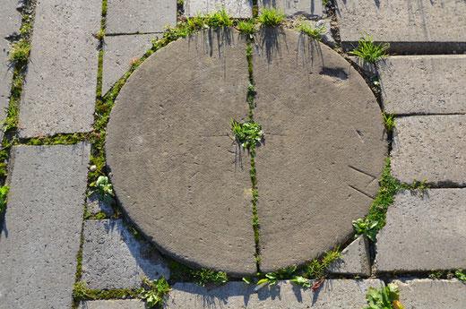 Une pierre à meuler les couteaux incrustée dans le trottoir à Fontaine-sur-Somme