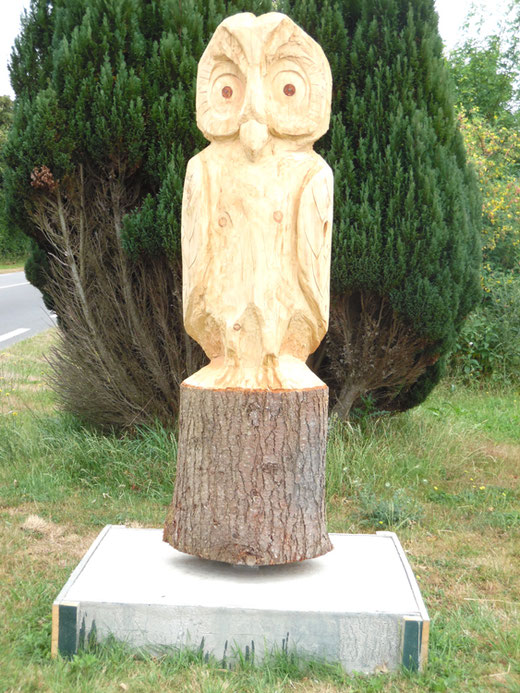 Une chouette sur un tronc d'arbre- Photo: Gégé d'Oisemont