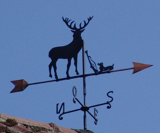 Combles: un cerf, rue des Lauriers
