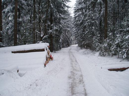 Winterwanderweg ins Tannerl