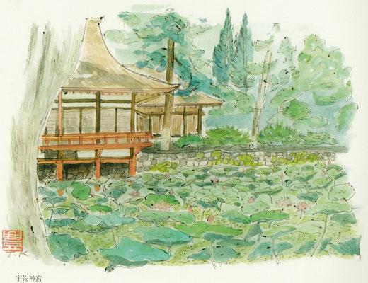 入院して初めて描いた宇佐神宮の蓮池