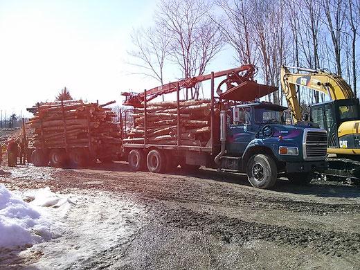 Transport forestier, camion 10 roues avec trailer pop et chargeuse