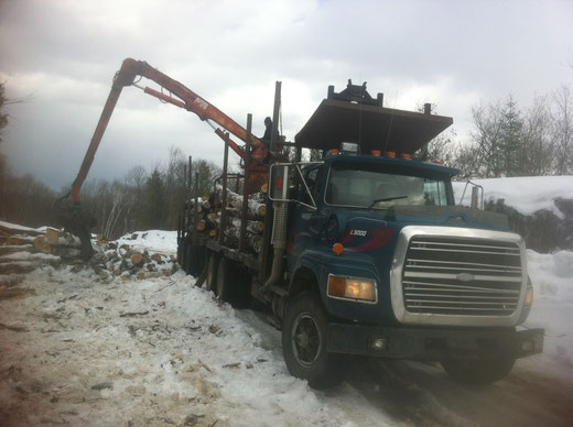 Camion forestier 10 roues avec chargeuse à bois et trailer pop