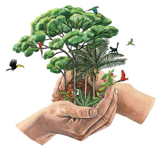 tpluseins Nachhaltigkeit Regenwald Planet beschüzen Natur