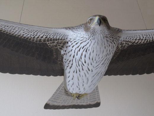 Aigle de Bonelli (Aquila fasciata - Bonelli's Eagle - Habichtsadler - Aguila-azor Perdicera) - x 1 - sculpture peinte bois - D.Rautureau - RTE Lyon-Jonage