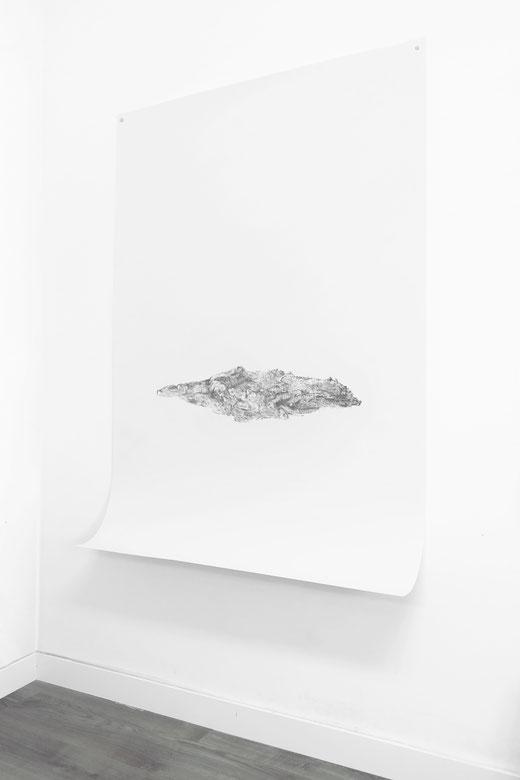[ Bark ] Lápiz carboncillo sobre papel. (145 x 105 cm. 2020)