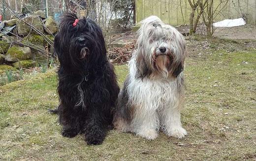 Kar-mi und Milka