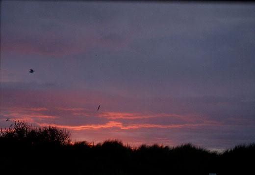 Sonnenaufgang am Morgen der Abreise