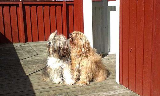 Bya-ra und Milka am Hauseingang