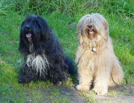 Basco und Bya-ra 2008
