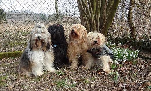 Milka, Kar-mi, Bya-ra und Indra