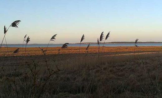 Blick von der Terrasse aus über die Bucht
