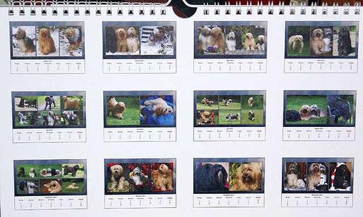 Srinagar-Danda Tibet-Terrier-Kalender