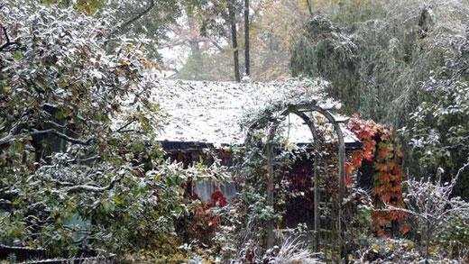 Unser Garten: Schnee im Oktober 2012
