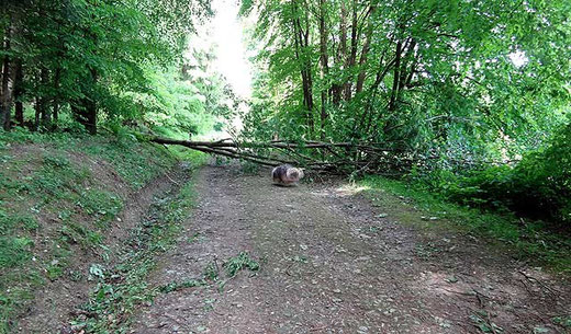 Nach dem Sturm