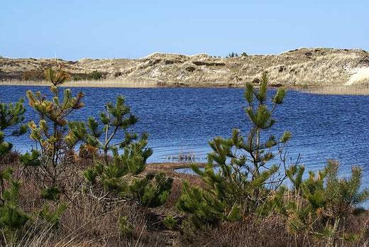 Grærup Sø