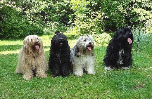 Bya-ra, Kar-mi, Milka und Bommel