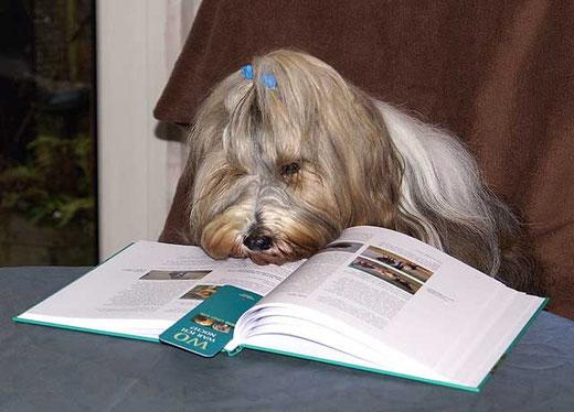 """Milka liest """"Wir und ihr"""""""