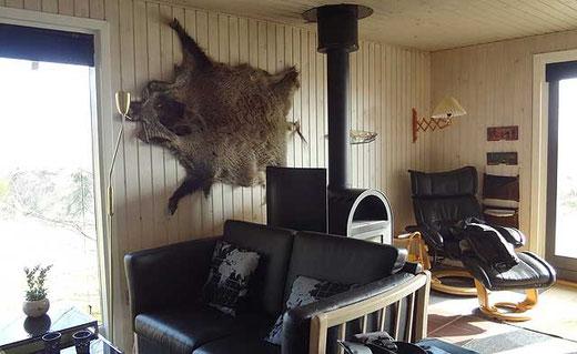 Wohnzimmer mit Ofen und an der Wand ein Wildschweinfell