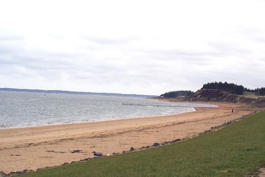 Am Strand von Hjerting