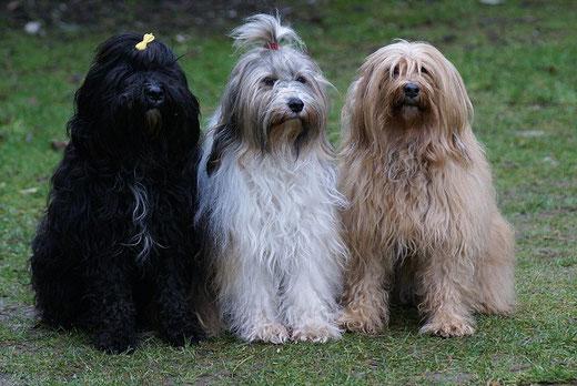 Kar-mi, Milka und Bya-ra