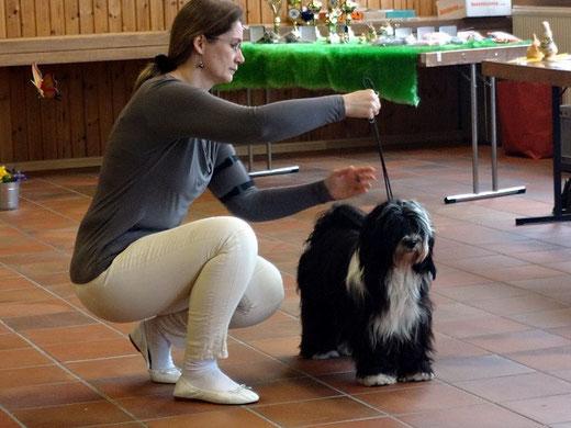 Lisha im Ring - Etzbach Tag 2