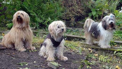 Bya-ra, Indra und Milka im Garten