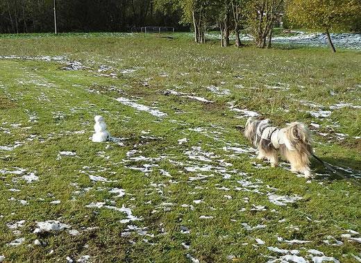 Milka entdeckt den Schneemann