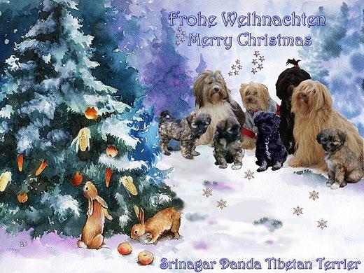 Frohe Weihnachten wünschen die Jungs und Mädels vom Tibet-Terrier-Zwinger Srinagar Danda