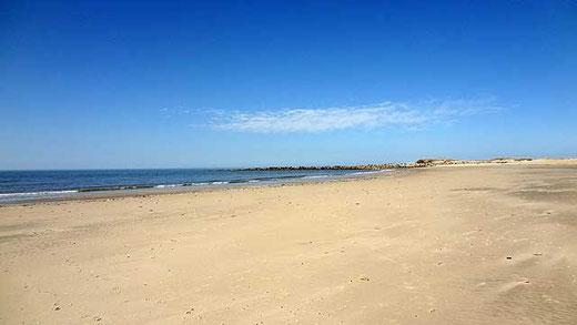 Der Strand von Blåvand
