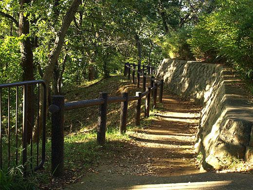 弘明寺公園の緑に包まれた遊歩道。桜だけでなく紅葉の季節も美しい