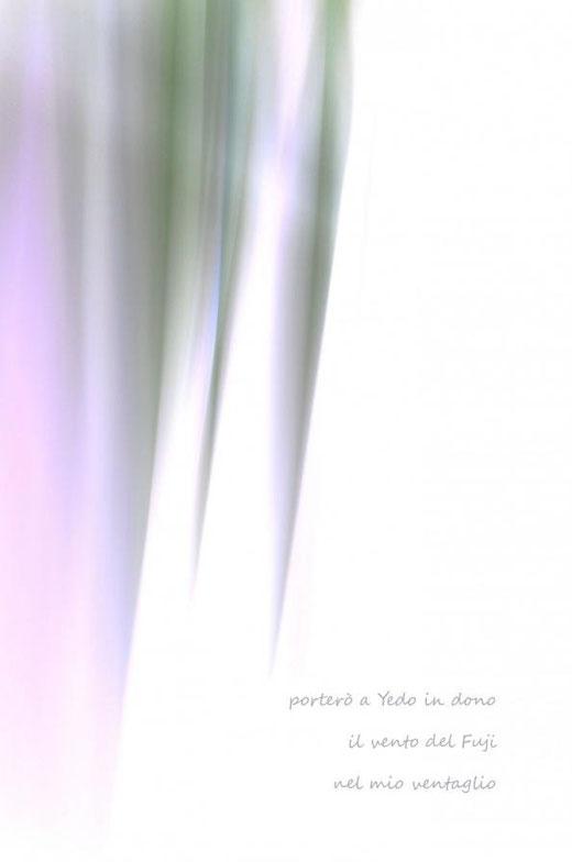 Di Leo Anna (Italia) – Haiku del vento – grafica digitale su carta - 23 x 35