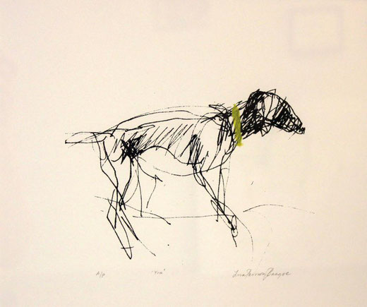 Lisa Persson Baagoe - The dog called Yra - inchiostro su carta 50 x 45